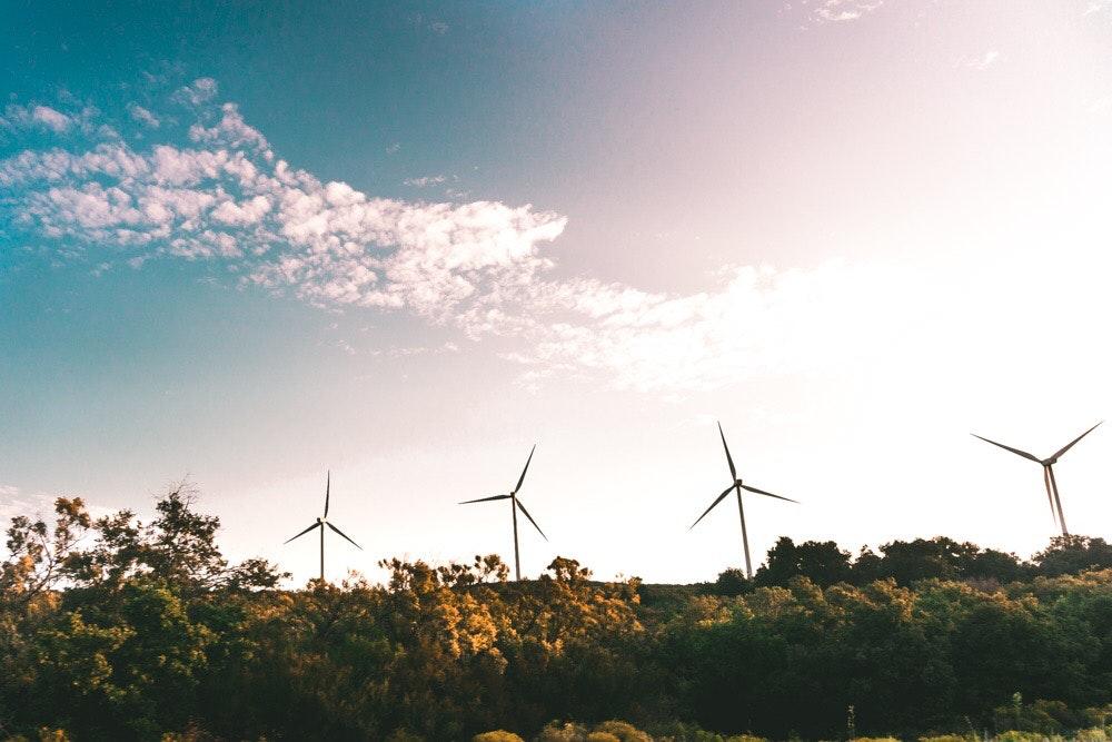Windkrafträder in der norddeutschen Natur